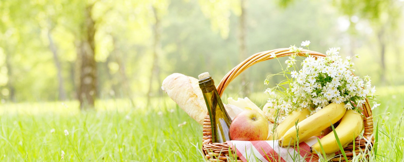 A picnic basket with wine, bananas, a baguette and an apple on the grass of a park