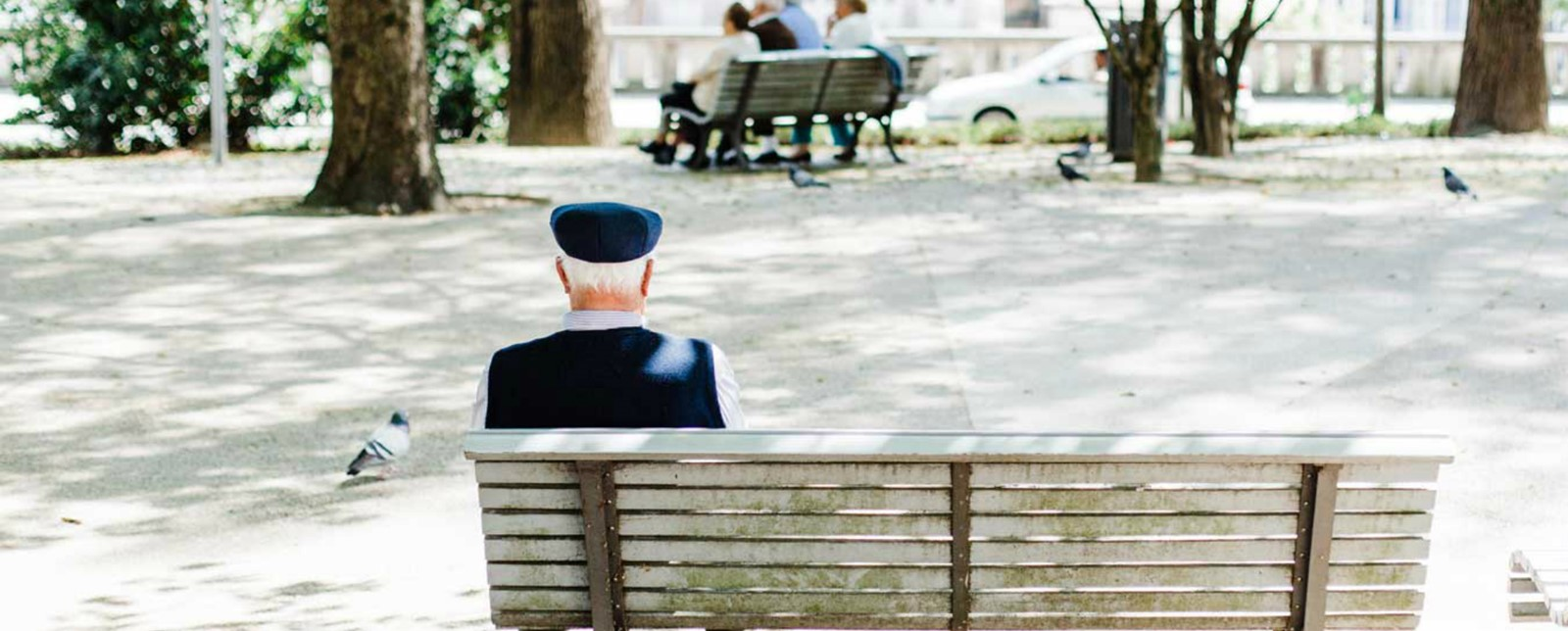 An old man sitting on a park bench